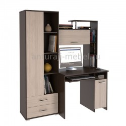 Компьютерный стол Антураж